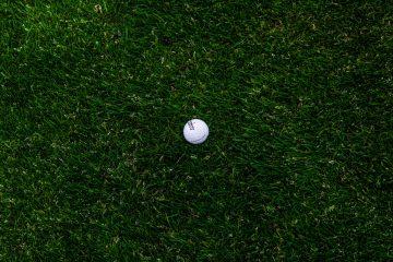 Campo da golf e pallina